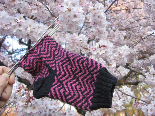 Tokena sock with cherry blossoms