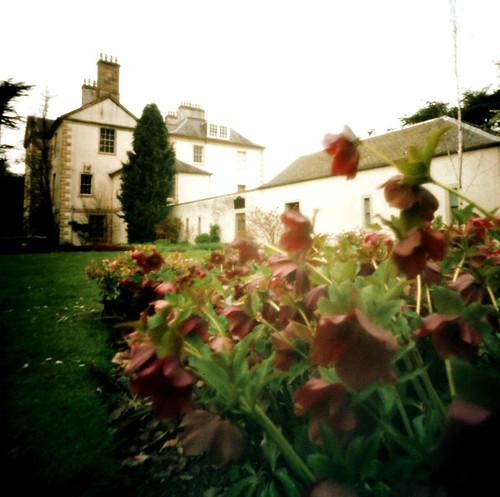 Rozelle house Pinhole