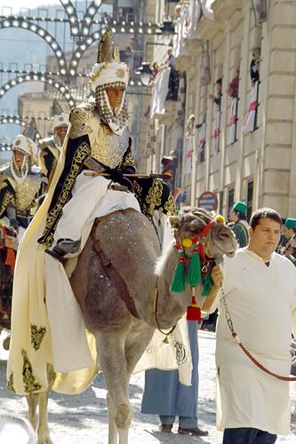alcoy-camels