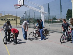 LIFE CYCLE: formação prática na Escola EB Integrada de Eixo