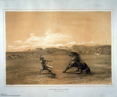 001-Captura de caballos salvajes-George Catlin 1875-1877