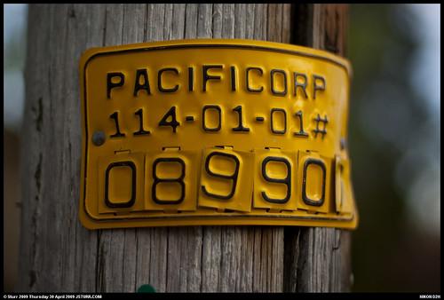 DSC_6410-border