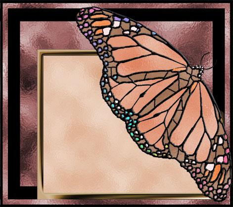 glassbutterfly