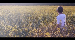 I Can't Find My Way Home! (geeo123) Tags: boy man yellow lost seed rape seeds lad anawesomeshot aplusphoto geeo123
