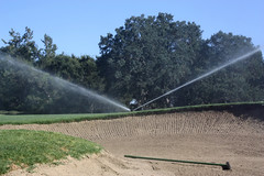 Sand Trap and Sprinkler
