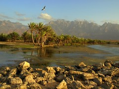 Far Away ~ Socotra Island, Yemen (Martin Sojka .. www.VisualEscap.es) Tags: blue nature colors clouds landscape vivid olympus yemen zuiko e30 gmt 1260 zd socotra 1260mm