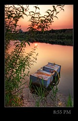 8:55 PM (schoebs) Tags: plants lake green water canon eos sonnenuntergang sundown cologne sigma kln ambient 1020mm hdr baggersee godorf 40d