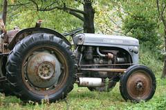 Tracteur dans une châtaigneraie (Lozère, Cévennes)