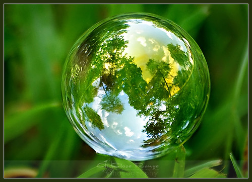 Macro Monday-Bubble Landscapes