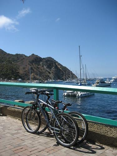 Catalina Island- 大小銀