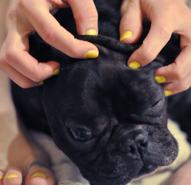 leroy squish head and yellow nail polish