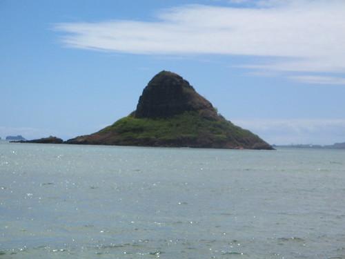 Oahu Circle Island Tour Half Day