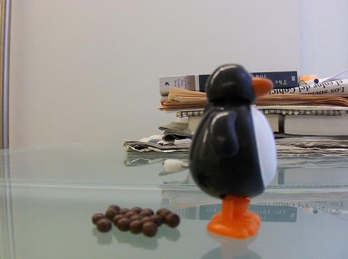penguinpoop 004