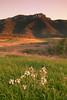 Atonement (segamatic) Tags: sunset mountain grass canon landscape eos spring shift fields wildflowers santamonicamountains tilt boney ranchosierravista satwiwa mywinners canontse45mmf28 photofaceoffwinner pfogold achallengeforyou 5dmarkii 5dmkii