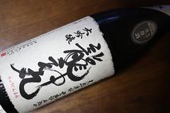 20090328 龍神丸
