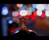 Catch The Lights! (khaniv13) Tags: indonesia actionfigure lights nikon colorful nightshot bokeh scene jakarta manualfocus yotsuba revoltech af50mmf14d d40x tamanmenteng khaniv13 catchthelights