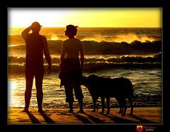 Golden Sunset (moi_images) Tags: sunset sea woman man beach dogs southafrica golden capetown spray llandudno whatsshesayingtohim