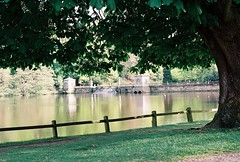 Studley Park Lake, Ripon (JohnRidley) Tags: park studley