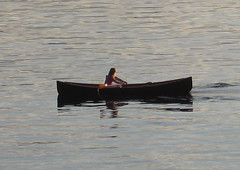 Rowing the boat down the lake