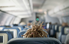 hairplane (mosippy) Tags: dreadlocks hair airplane airborne milehigh deltaairlines 2470 5dii laxtoslc