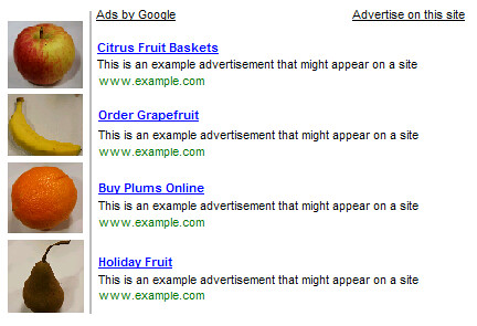 Google Adsense: Can I place small images next to my Google ads?