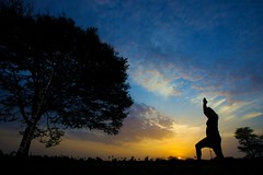 Rise and Shine        [Made it to Front Page] (Kausthub) Tags: sky sun india tree sunrise explore handheld dslr frontpage 2009 silhoutte sillhoutte platinumphoto theunforgettablepictures canoneos5dmarkii canonefllens canonef1635mmf28usmllens