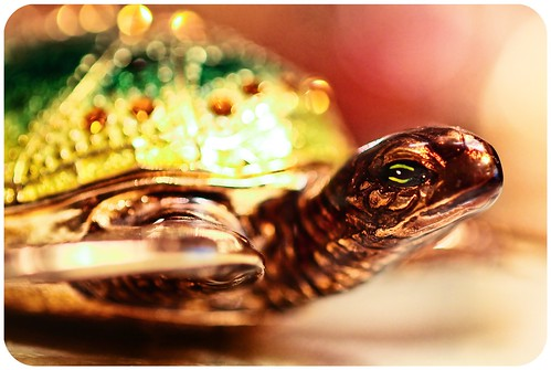 Bejeweled Turtle