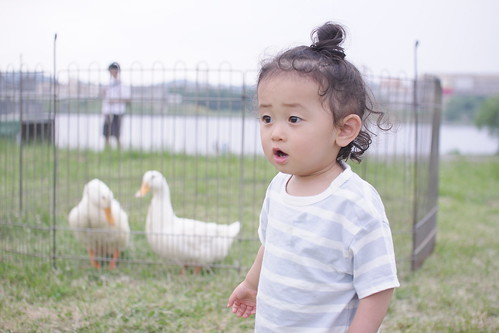 Youri & Duck