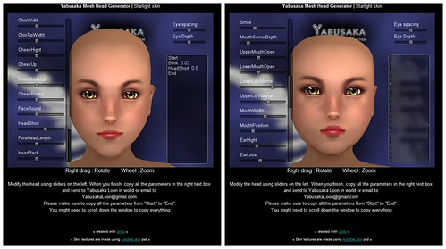 Yabusaka Full-Body Mesh Female
