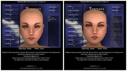 Yabusaka Full-Body Mesh Female