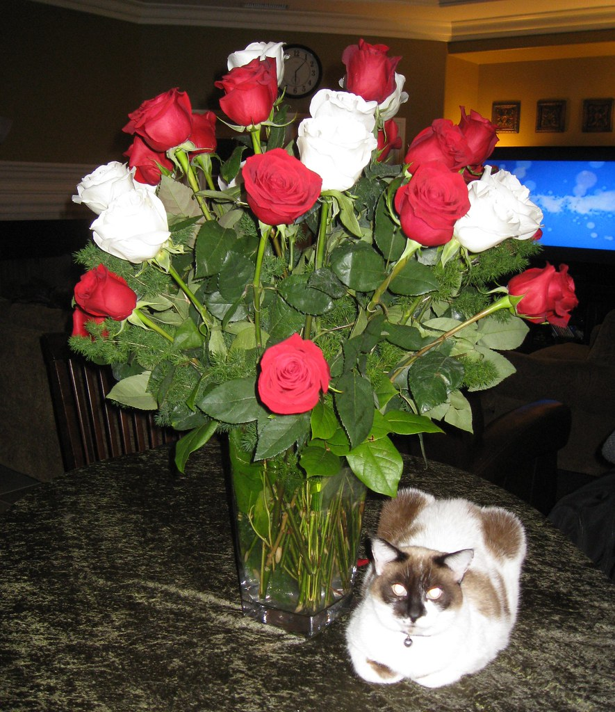 "Nothing says, ""You're An Afterthought"" quite like a day AFTER Valentine's Day bouquet!"