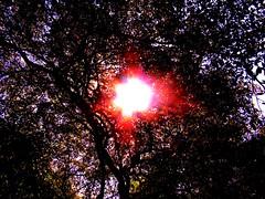 Genesis [ The Creation of the World ] (suelyitamarsantiago) Tags: lux fiatlux blueribbonwinner otw platinumphoto a720is goldstaraward rubyphotographer