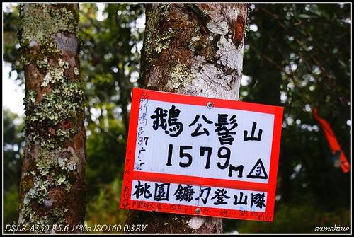 DSC09748_nEO_IMG