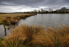England: Northamptonshire - Overcast Day (Tim Blessed) Tags: uk sky nature water clouds reeds landscapes countryside scenery lakes wetlands grasses ponds singlerawtonemapped