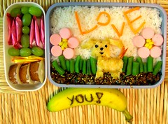 Doggy Bento #23 (Laura Bento) Tags: food dog love cake fruit lunch japanese candy rice banana bento