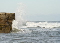 Crashing Wave (afnw35342) Tags: ocean sea cliff rocks surf crest spray whitehorses crashingwave