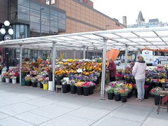 94:365市场的花卉供应商