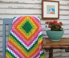 Florida Everglades Country Shot (smtownfun/domestica) Tags: crochet craft blanket afghan etsy grannysquare