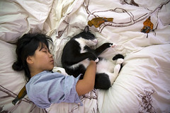 spooning (kozyndan) Tags: morning sleeping woman pet love girl cat bed sleep spooning kitty lovers paneer kozy