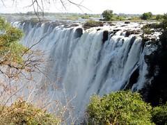 IMG_4161 (LearnServe International) Tags: education international learning trips service victoriafalls zambia learnserve lsz lsz09
