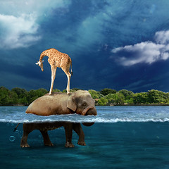 Safe (Martine Roch) Tags: blue elephant water animals river square landscape surrealism dream surreal montage photomontage surrealist safe girafe manray petitechose martineroch
