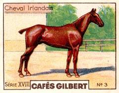 gilbert chevaux009
