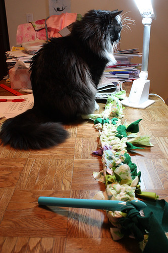 Gus with crocheted fabric