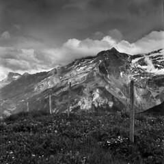 Le massif des Diablerets (Tonton Dave) Tags: mountain monochrome montagne alpes landscape suisse hasselblad paysage diablerets 3000m