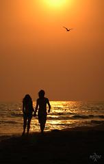 San_Valentino... (syder.ross) Tags: sea summer people sun love sol beach gold mare estate sole amore spiaggia oro sanvalentino innamorati
