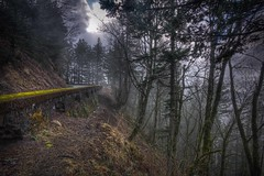 Mystic Highway (Jeff Engelhardt) Tags: road old trip trees cloud sun mountain green yellow rock fog stone corner turn forest canon river drive moss cool woods highway quiet bend path hill masonry peaceful roadtrip columbia follow trail journey mystical hillside hdr highdynamicrange mystic bucolic columbiarivergorge photomatix 40d historichighway30 pca56