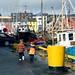 Harbour Scene - Ireland Study Abroad