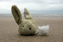 Bunny. (DJ Bass) Tags: bunny beach toys sadness bugs bleak rabbits losttoys whatsupdoc ofmiceandmen