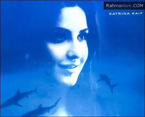 Katrina Kaif underwater photo