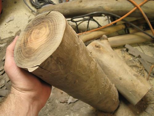 Eucalyptus logs!